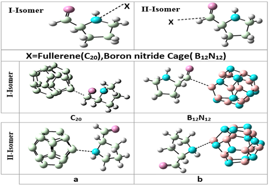 Adsorption of proline amino acid on the surface of fullerene (C20) and boron nitride cage (B12N12): A comprehensive DFT study