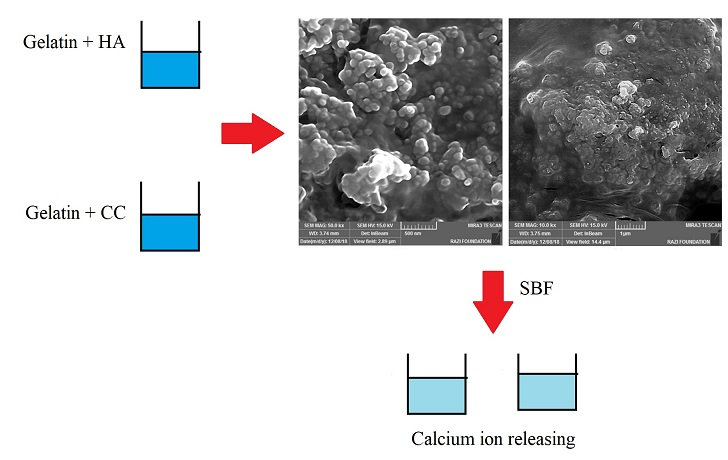Hydroxyapatite-gelatin and calcium carbonate- gelatin nanocomposite scaffolds: Production, physicochemical characterization and comparison of their bioactivity in simulated body fluid