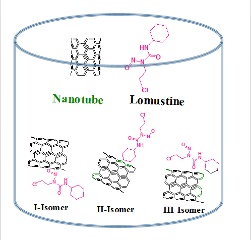 Adsorption of lomustin anticancer drug on the surface of carbon nanotube: A theoretical study