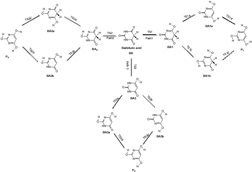 The mechanism of proton transfer and tautomerism in barbituric acid: A theoretical study