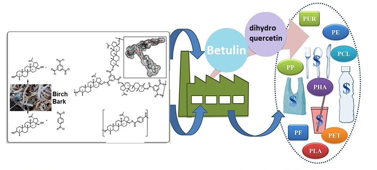 Creation of biodegradable polymeric materials with antimicrobial properties