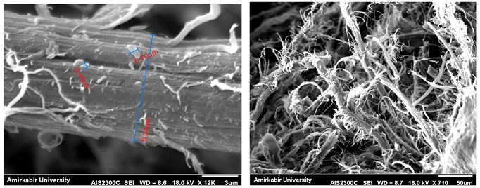 A novel inexpensive method for preparation of silk nanofibers from cocoons