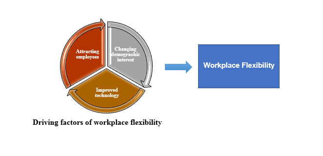 Critically analysing the concept of workplace flexibility and how it impacts employee and organizational performance: A case of the retail industry in India