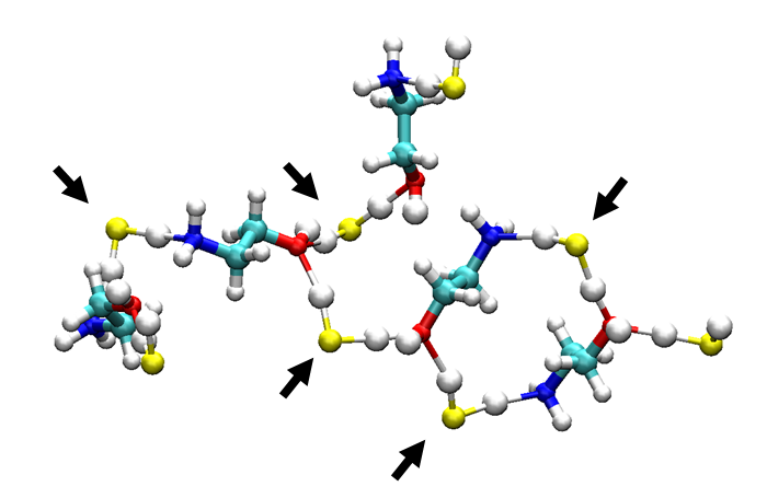 Molecular dynamics simulation of natural gas sweetening by monoethanolamine