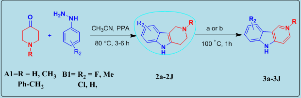 A novel and simple strategy for the synthesis of γ-carboline